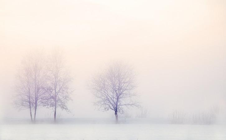 秋冬交接,霜降時節如何好好養生?