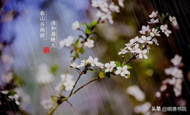 谷雨:心有希望正葱茏,从暮春走出新开始