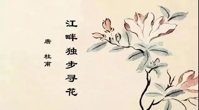 """明德书院:春意袭人,看诗人杜甫江畔的""""寻花组诗""""之妙"""